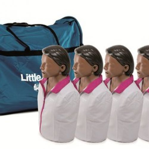 Little Anne Four Pack, Brown Skin